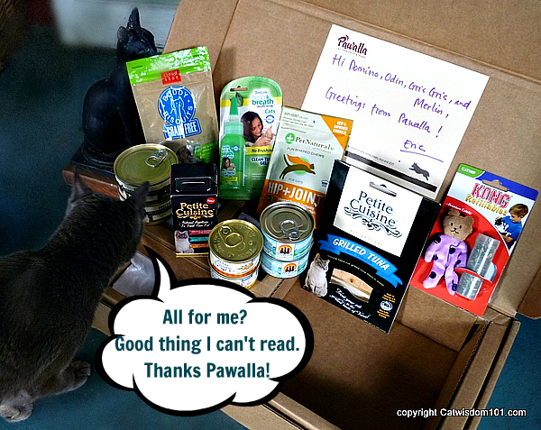 pawalla-gift-cats-review-giveaway