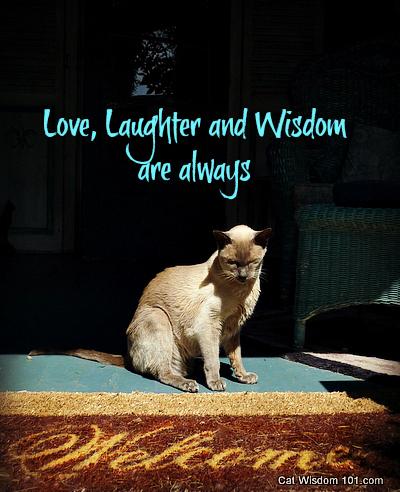 welcome-cat-merlin-quote-wisdom