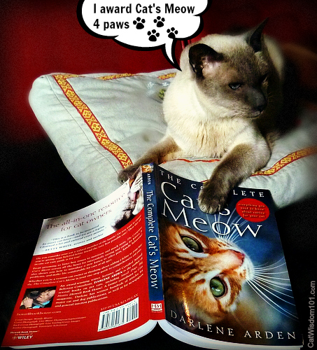 Cat's Meow-cat-book-review-merlin