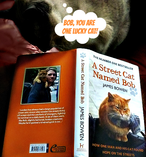 a street cat named bob-book review-giveaway-james bowen