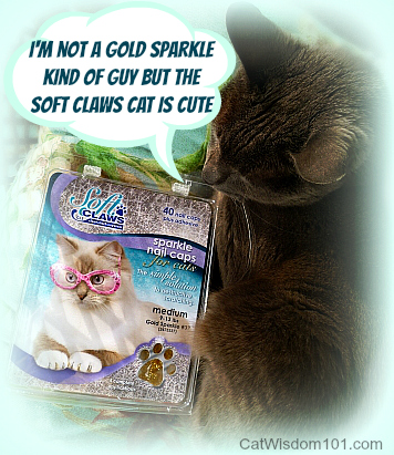 soft claws-review-giveaway-cat