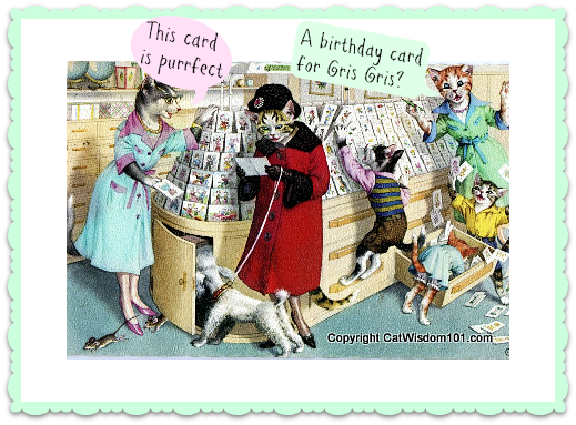 Vintage Cat Card Birthday Store Cats Cute