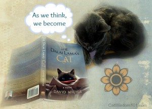 The Dalai Lama's Cat-novel-cats-David Michie-quote-Buddhism