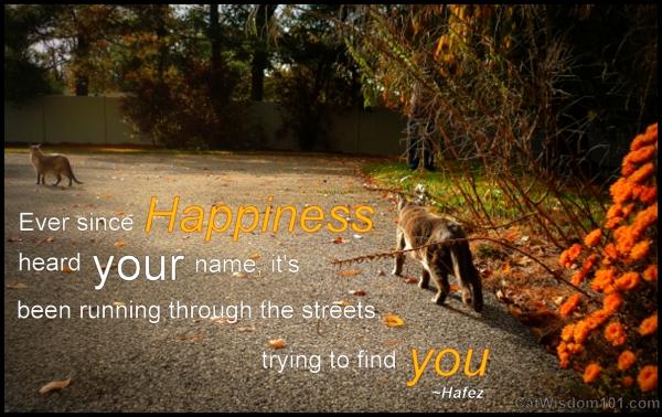 cats-quotes-happiness-hafez-wisdom