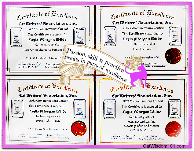 certificate-excellence-cwa-cat writers' association- Layla Morgan Wilde