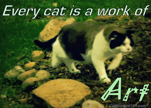 every-cat-work-art-quote-domino-feral