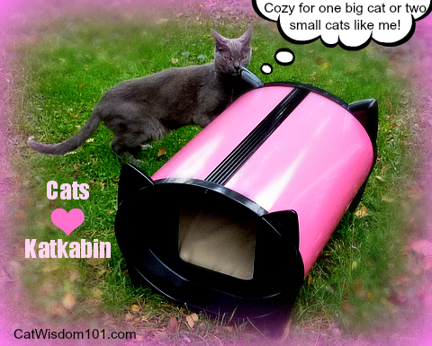 katkabin-outdoor-cat-shelter-bed