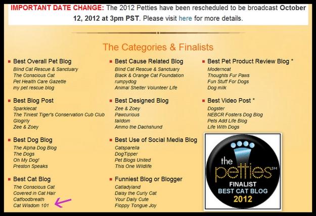 petties-pet blogger-awards-cat wisdom 101