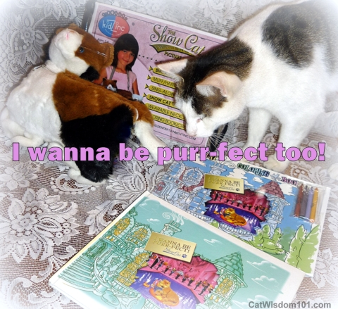 I wanna be purrfect-review-giveaway-book-children's-cats-giveaway