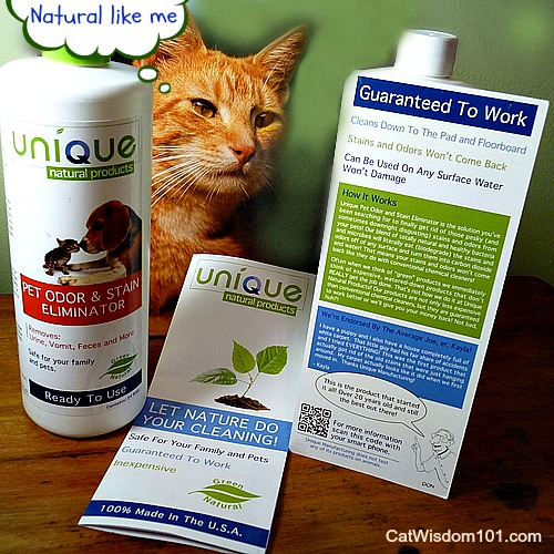 Unique-natural-products-cleaning-pets-green-giveaway