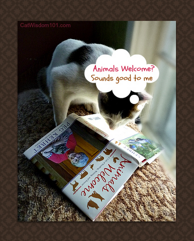 animals welcome-peg Kehret-book-review-giveaway