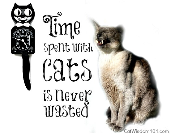 quote-time-cats-humor-mondays with merlin-kit kat clock