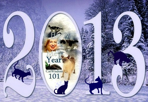2013-new year-cats