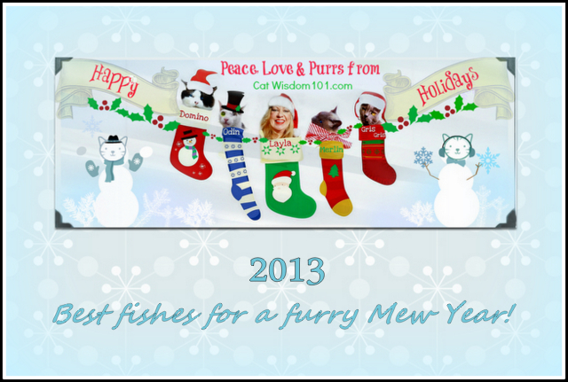 peace, love, purrs, holiday, Cat Wisdom 101, Christmas-new year 2013