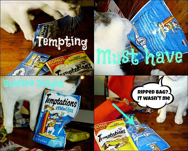 temptations-mix ups-treats-cats-surfer's delight-giveaway