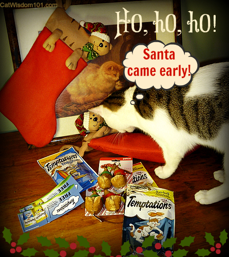 temptations-treats-cats-holiday-stocking-giveaway