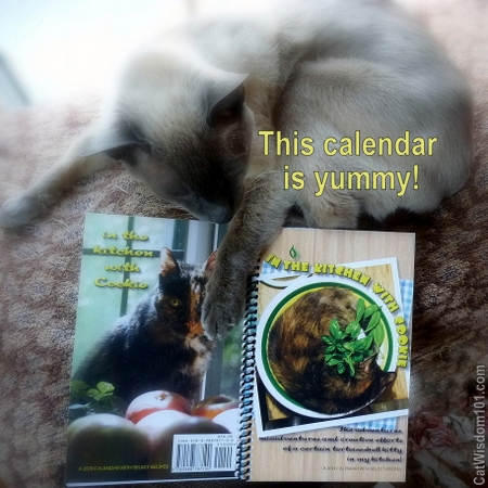 2013-cat-recipes-calendar