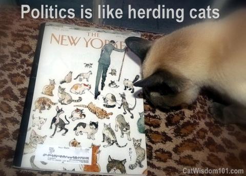 new yorker-cats-herding-quote