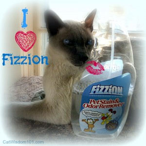 Fizzion-review-giveaway-pet-stain-odor