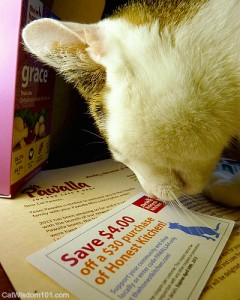 Pawalla-honest kitchen-cat food-coupon