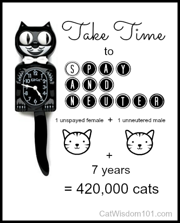 Spay-Day-kit-kat-clock-cats Yay, It's World Spay Day!