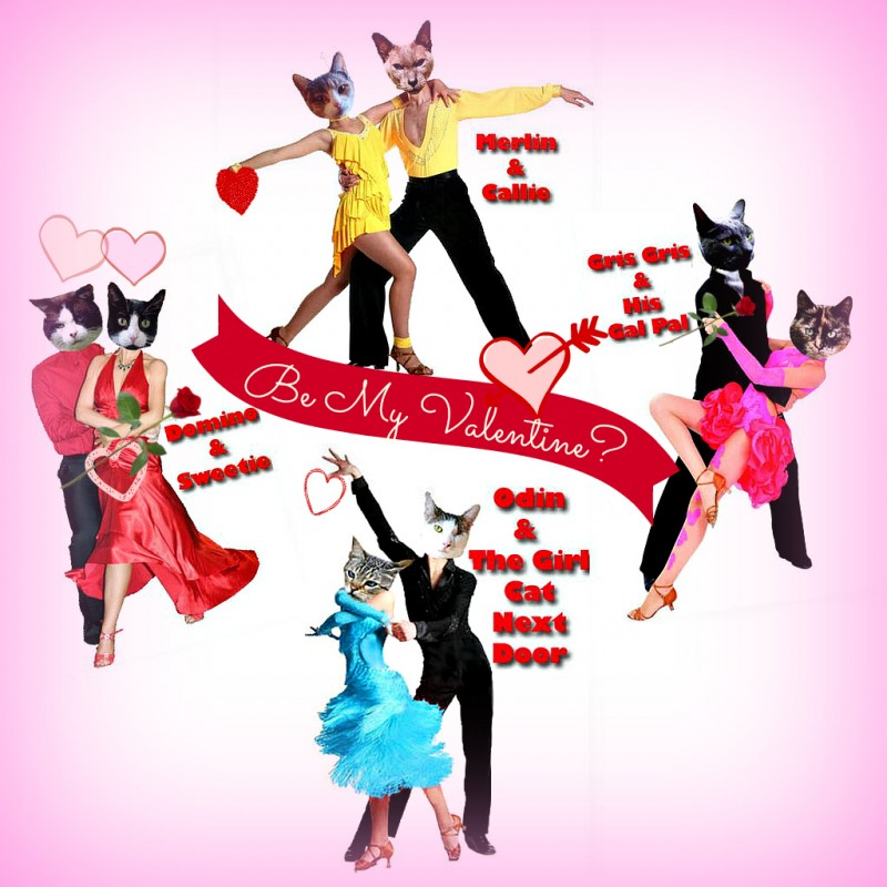 Valentineu0027s Day Ball Cats Dancing