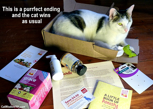 pawalla-mini-box-cats-giveaway-purrfect