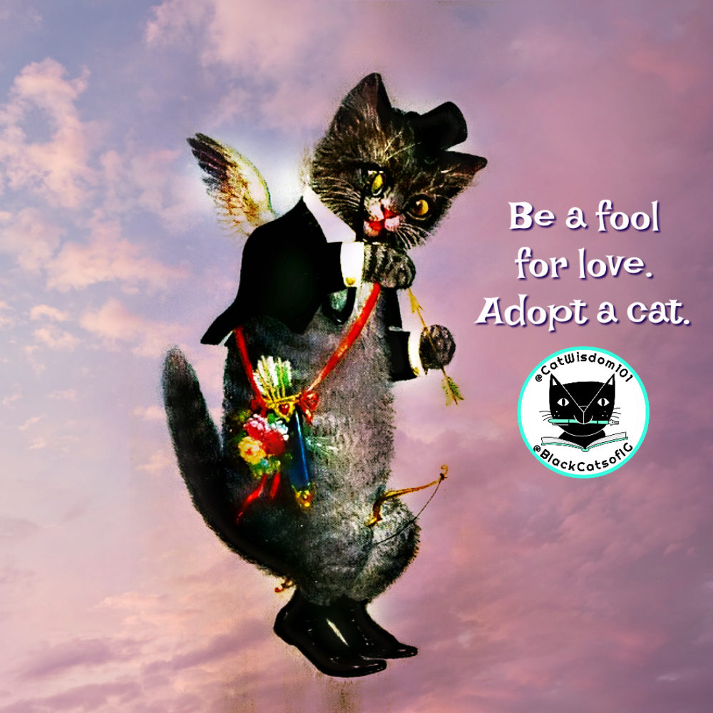 cupid_april_fool_vintage-cat
