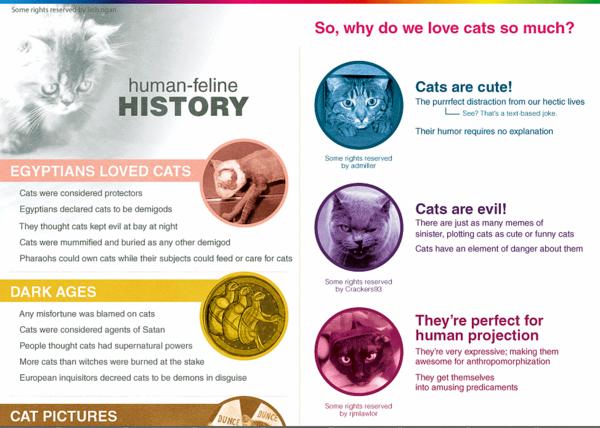 human-feline-history-infographic