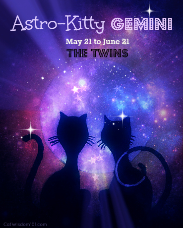 Astro-Kitty Gemini & Paintagr.am Giveaway
