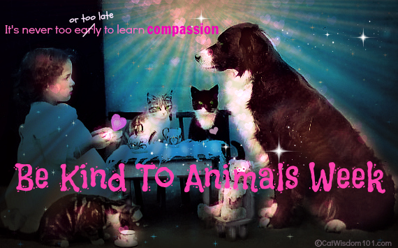 be kind to animals week-vintage-cats-dogs-humane society