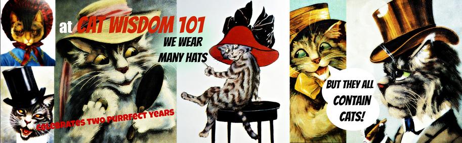 cat wisdom 101-tagline- anniversary-blogoversary
