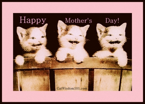 cats-mother's day-kittens-vintage.bmp
