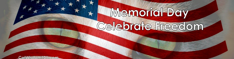 memorial-day-cats-celebrate-freedom-quote-