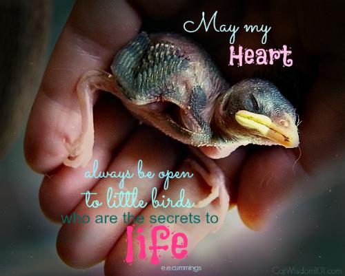 Bird-nestling-quote-ee cummings-heart-life