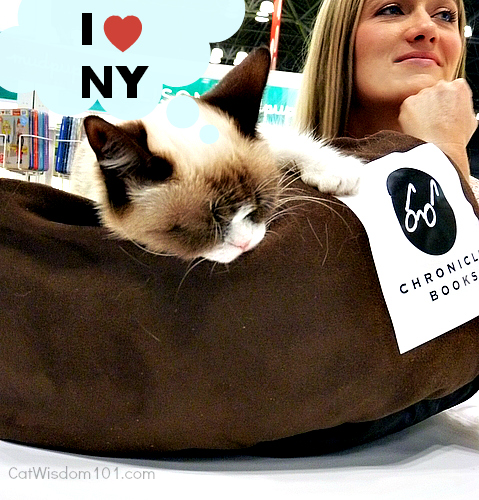 Grumpy Cat-chronicle books-BEA-Tabatha Bundesen