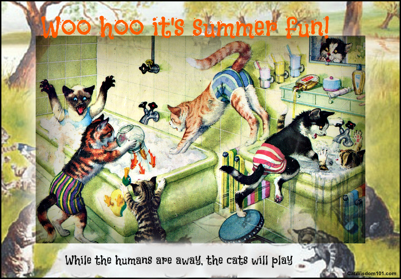 cats-summer-stress-vintage art