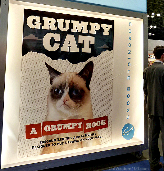 grumpy cat-chronicle books-BEA-cat book