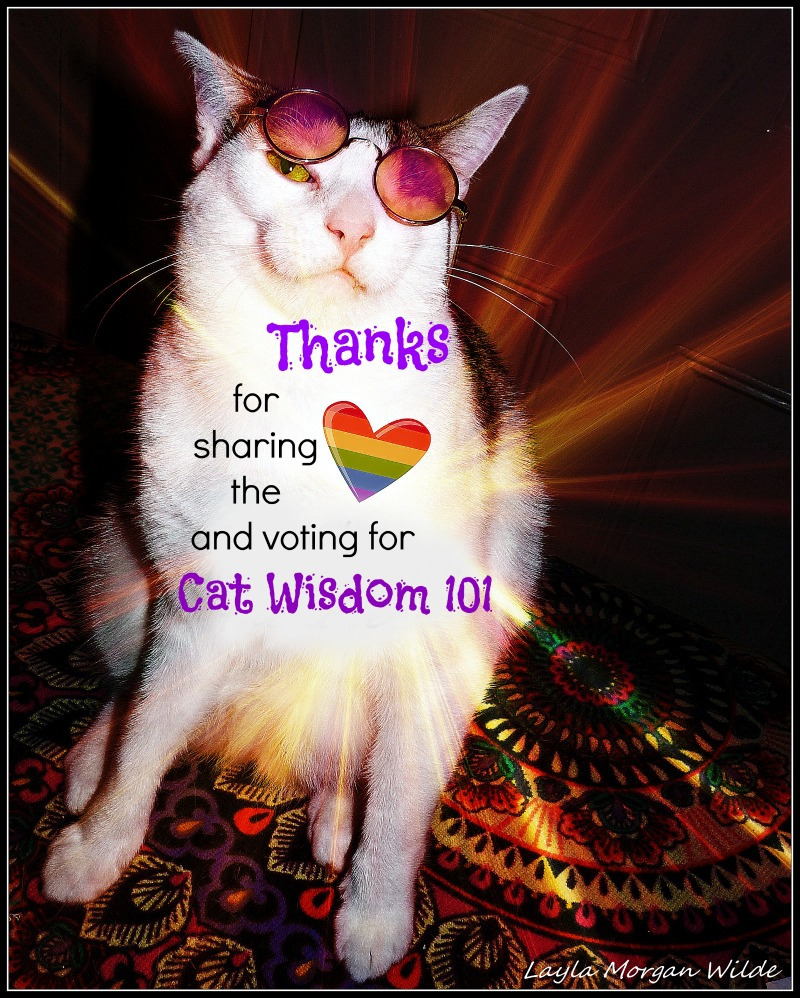 Will Cat Wisdom 101 Win a Pettie Award?