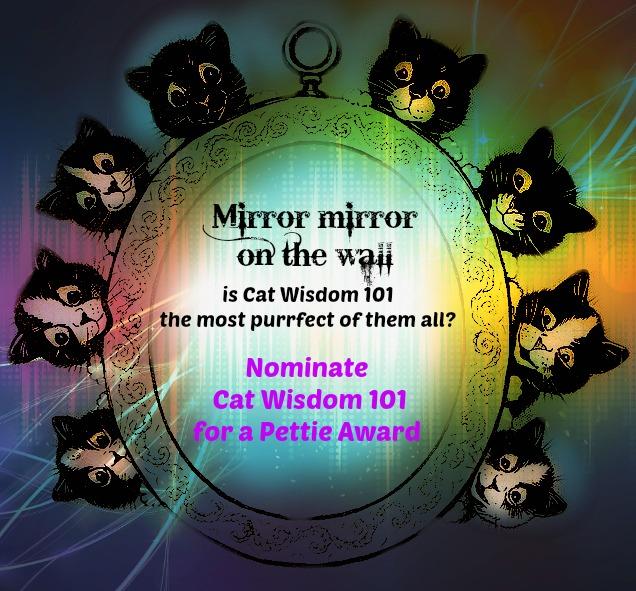 vote-cat wisdom 101-petties award-best cat blog
