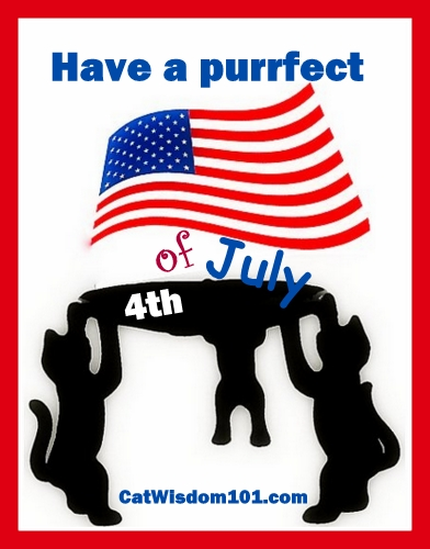 4th of july-cats-purrfect holiday