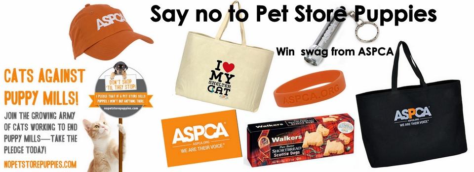 ASPCA-no pet store puppies-video-giveaway-cat wisdom 101-099