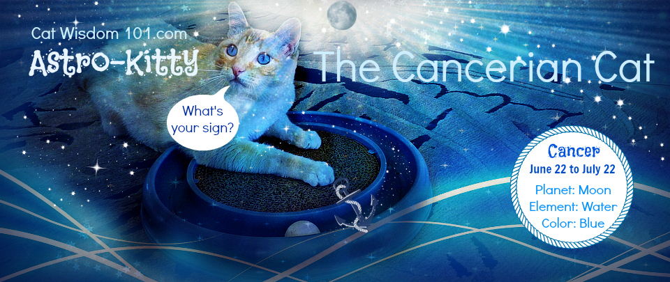 AAstro-Kitty-Cancer-cat-astrology
