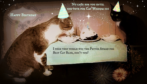Birthday Wishes Vintage Cats Pettie Awards