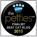 Cat wisdom 101-pettie-finalist-best cat blog.bmp