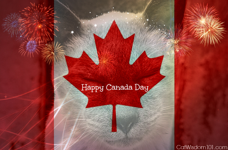 canada day-ex pats-cats