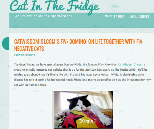 cat in the fridge-cat blog-cat wisdom 101-domino