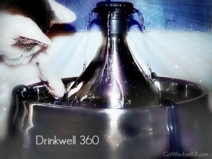 drinkwell 360-giveaway
