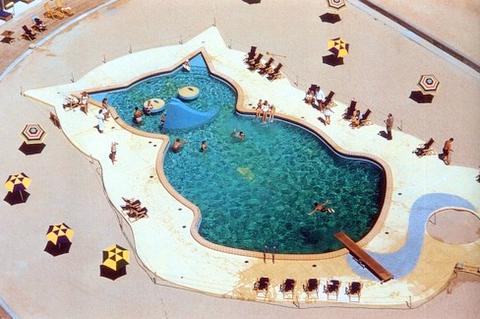 Kitty Cat Swimming Pool