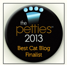 pettie-award-dogtime media-finalist-best cat blog